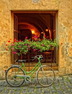 Window of the Bistro de l'Arte, with a flowerbox and green bicycle