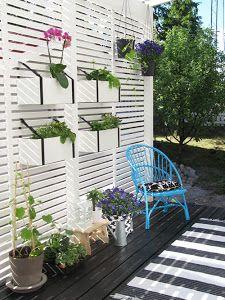 Ideas para decorar con planteas