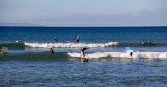 Top 10 Beginner Surf Breaks in Maui
