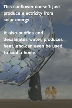 This solar sunflower doesn't just produce electricity from solar energy — it also purifies and desalinates water, produces heat, and can even be used to cool a home. Here's how it works!