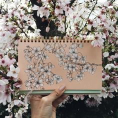 Stunning use of our Spumuni Notebook by artist I always liked sketching with black and white pencil/charcoal on colored stock and it's one of the reasons I developed these notebooks. Heads up from Watercolor Landscape, Watercolor Flowers, Pen Illustration, White Pencil, Cherry Blossom, Backdrops, Vintage World Maps, Doodles, Artsy