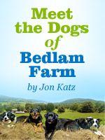 Meet the Dogs of Bedlam Farm, by Jon Katz