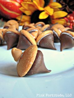 The Coconut Head's Survival Guide: Easy Acorn Treats  - Try these at home!