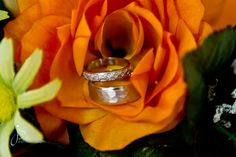 Rings in beautiful floral arrangement