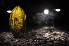 le cacao - L'instant cru