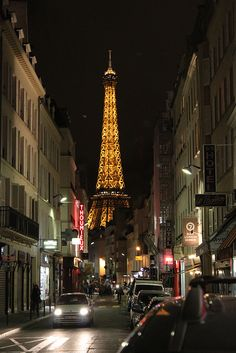 A view of the Eiffel Tower from Rue Saint-Dominique