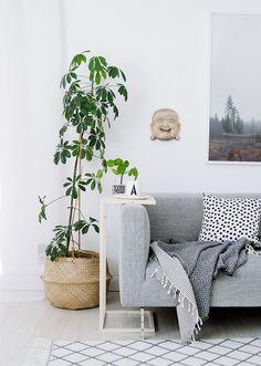 Få mest muligt ud af din lille studiebolig med smarte møbler og fikst tilbehør, der sparer plads og opfylder mange behov.