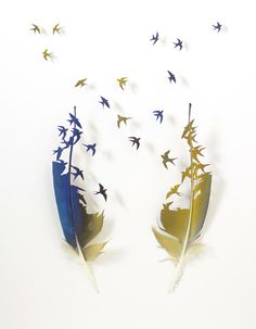 Arte plumas                                                       …