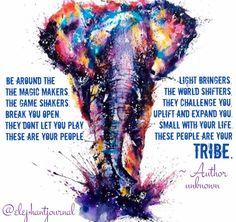 #elephantjournal @walkthetalkshow