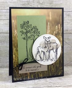 In the Meadow stamp set and Stitched Shapes Framelits by Stampin' Up! Stamps to die for 2