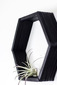 Make these DIY hexagon shelves using popsicle sticks for some simple honeycomb decor. : Make these DIY hexagon shelves using popsicle sticks for some simple honeycomb decor. Honeycomb Shelves, Hexagon Shelves, Diy Hanging Shelves, Diy Wall Shelves, Shelving, Diy Home Decor Rustic, Diy Wall Decor, Diy Simple, Easy Diy