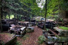 Creepy car graveyard from WWII in a Belgian forest. Abandoned Houses, Abandoned Places, Car Dump, Urban Decay Photography, Bg Design, Best Barns, Combi Vw, Old Pickup Trucks, World View