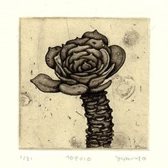 Etsy の etching with chine-collé succulent 70e010 by oo3oo3