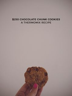 $250 Chocolate Chunk Cookie Thermomix Recipe