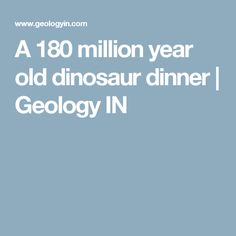A 180 million year old dinosaur dinner | Geology IN