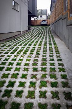 many ideas for driveways with a focus on semi-permeable solutions for eco-friendliness