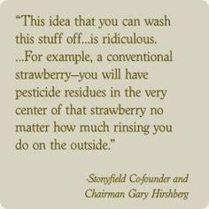 """Stonyfield Organic quote regarding the pesticides used by conventional strawberry growers. The article states """"The pesticides are designed to be taken by the cells of the plant, so you can't wash the pesticides off because they are inside the fruit. The pesticides the USDA has found on strawberries include toxins known to cause cancer, developmental problems, reproductive problems and nervous system damage in humans."""" Excellent article w/several linked references for further information."""