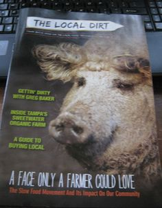 Local Dirt - Tampa's local food publication