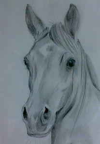 Spiksplinternieuw 25 beste afbeeldingen van paarden tekeningen - Paard tekeningen YL-02