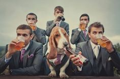 Groomsmen play an important part in your wedding. They are among the most important people you will have at the wedding. Your groomsmen are your pals and brothers. In fact, it isn't difficult… Wedding News, Wedding Poses, Trendy Wedding, Dream Wedding, Wedding Day, Dogs At Wedding, Weddings With Dogs, Dog Wedding Outfits, Wedding Stills