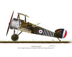 Albatross DV Red Baron 1917 Vintage by ProfilePrintsGallery