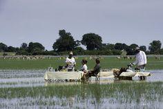 Bush lunch in the waters of the Okavango Delta from Jao Camp. Okavango Delta, Outdoor Furniture Sets, Outdoor Decor, African Safari, East Africa, Amazing Destinations, Wilderness, Dolores Park, Wildlife