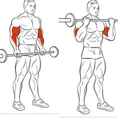 Best Of Biceps Exercises Part 5 - Healthy Fitness Arm Training