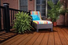 Decking: XLM Tropical Deck Color: Rustic Bark Railing: RadianceRail Railing Color: Classic Black