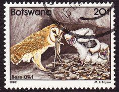 Botswana 1982 Birds SG525 20T Used | eBay