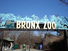 Still one of my favorite places. Loved playing in the children's zoo as a little girl! The Bronx Zoo, New York