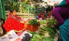 Informal credit markets through farmers' groups is important for small farmers in Nepal.
