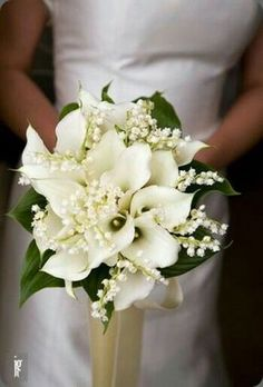 Calla Lilies & Lily of the Valley Wedding Bouquet. I would take out the leaves., Calla Lilies & Lily of the Valley Wedding Bouquet. I would take out the leaves. Calla Lilies & Lily of the Valley Wedding Bouquet. Lily Of The Valley Wedding Bouquet, Calla Lily Wedding Bouquet, Spring Wedding Bouquets, Wedding Dresses, Lys Calla, Perfect Wedding, Dream Wedding, Calla Lily Bouquet, Calla Lily Boutonniere
