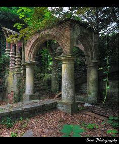Ruin:  human actions on human creations, Chateau Charle-Albert in Boitsfort, Belgium. Set ablaze three times, vandalized and pillaged