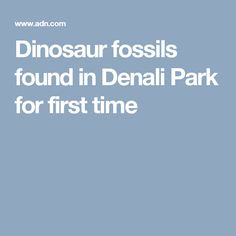 Dinosaur fossils found in Denali Park for first time