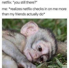 23 Dank Memes Hilarious Cant Stop Laughing 2 Funniest Hilarious Memes, Funny Video Memes, Crazy Funny Memes, Really Funny Memes, Stupid Funny Memes, Funny Relatable Memes, Best Memes, Haha Funny, Funny Stuff