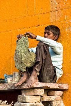 Varanasi Dreaming
