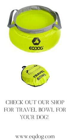 Check out our online shop for more outstanding dog equipment! Walking Equipment, Hiking Dogs, Dog Walking, New Toys, Dog Owners, Your Dog, Lovers, Gift Ideas, Check