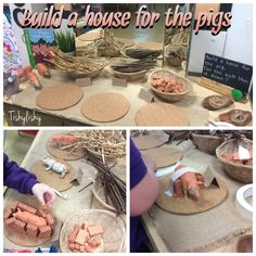 Building houses for the pigs