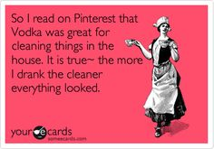 So I read on Pinterest that Vodka was great for cleaning things in the house. It is true~ the more I drank the cleaner everything looked.
