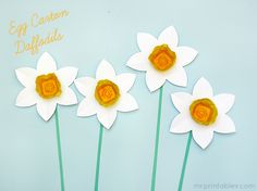 DIY - Daffodils from Egg Cartons