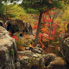 Wyalusing SP ridge-top camp sites- Here are 6 of our picks for leaf-peeping in some of the Midwest's lesser-known parks and preserves. Franconia Sculpture Park, Vacation Trips, Vacations, Vacation Ideas, Taylors Falls, Thru Hiking, Belleza Natural, Travel Goals, Outdoor Camping