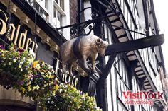 Winner of the People's Choice: Best York Pub/Bar Award at the Visit York Awards 2013 - The Golden Fleece, York, UK