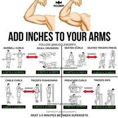 """8,129 Likes, 56 Comments - MuscleMorph® (@musclemorph_) on Instagram: """"ADD INCHES to your arms with this superset workout LIKE/SAVE IT if you found this useful. FOLLOW…"""""""