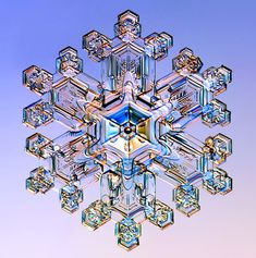 A Stellar Dendrite snowflake photographed under a microscope.