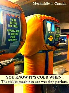 Funny pictures about Cold in America? Oh, and cool pics about Cold in America? Also, Cold in America? Canadian Things, I Am Canadian, Canadian Humour, Canadian Memes, Meanwhile In Canada, Meanwhile In America, Dump A Day, Everything Funny, Funny Captions