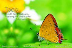 """""""Todo mundo quer transformar, mas ninguém quer mudar."""" — Frederica Mathewes-Green - Veja mais sobre Espiritualidade & Autoconhecimento no blog: http://sobrebudismo.com.br/"""