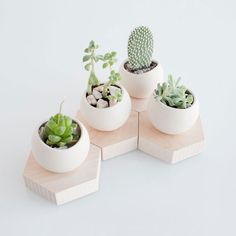 Succulent Cell Planter - makes these cheaper by cutting wood and attaching small cups.  IKEA project?