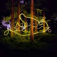 Nice light painting in the forrest