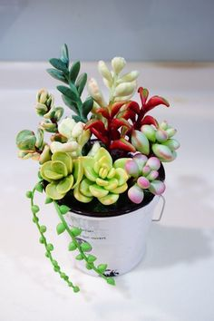 Baby Succulents, Succulents In Containers, Planting Succulents, Succulent Display, Succulent Arrangements, Cute Polymer Clay, Polymer Clay Crafts, Purple Plants, Watercolor Succulents