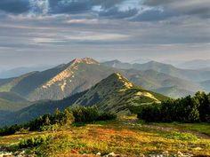 beautiful view on the Carpatians, Ukraine